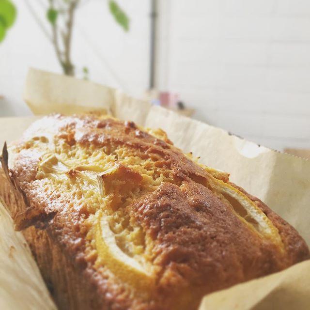 ..明日18(水)は定休日です.*********** レモンとスパイスジンジャーのパウンドケーキ🍋.生地にジンジャーをたっぷり練りこんで焼き上げた生地に爽やかなレモンの風味がとても冬らしいケーキです#スゥレッドカフェ今月のお休み #スゥレッドカフェ