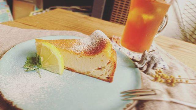 【本日のチーズケーキ】レモンとヨーグルトのチーズケーキ水切りヨーグルト、レモン皮や果肉を混ぜこみ焼き上げました。暑くなってきた今の時期にピッタリの、サッパリすっきりとした爽やかなチーズケーキです🍋是非1度ご賞味ください。薄力粉不使用。#スゥレッドカフェ #スゥレッドカフェスイーツ #threadcafe #チーズケーキ #グルテンフリー #レモン