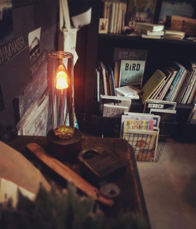 先日、@kinoko_akariさんの商品撮影にカフェ内を使用して頂きました。ひとつひとつ手作りの小さな灯りはとても優しく、心地よい空間を造ってくれます!#kinkoakari さんありがとうございました #スゥレッドカフェ ******7月のお休み21(金)~27(木)まで少し早めの夏季休暇となります、ご来店を予定して頂いたお客様には大変ご迷惑をおかけいたします。※第3水曜日の19日は営業致します。どうぞよろしくお願致します